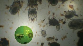 Next Allergy TV Spot, 'Ácaros de Polvo' [Spanish] - Thumbnail 2