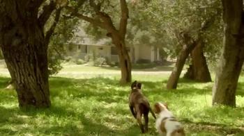 PetSmart TV Spot, 'Instinct Raw Boost' - Thumbnail 3