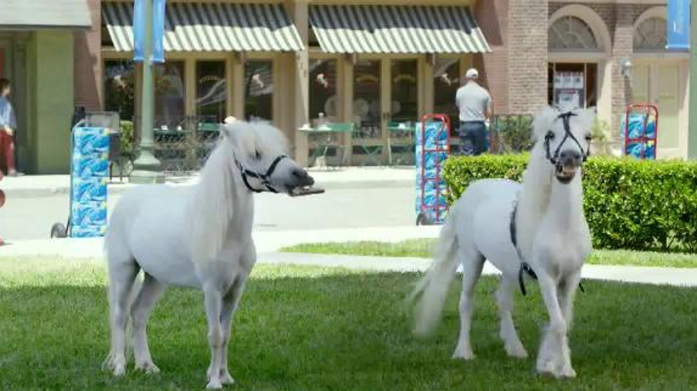 Bud light tv commercial whatever usa one trick pony ispot aloadofball Choice Image