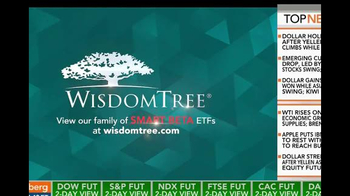 WisdomTree TV Spot, 'SmallCap Earnings Fund'