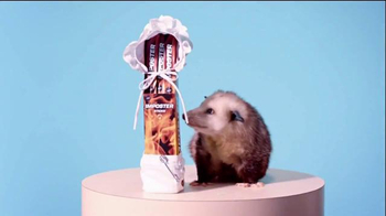 Slim Jim TV Spot, 'Possum' - Thumbnail 6