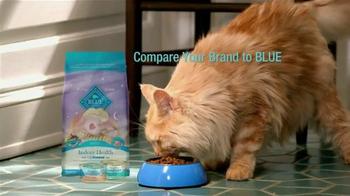 Blue Buffalo Indoor Health Food TV Spot - Thumbnail 10