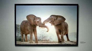 Intel Tablets TV Spot, 'Wildlife Photographer Paul Soulders'