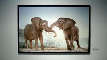 Intel Tablets TV Spot, 'Wildlife Photographer Paul Soulders' - Thumbnail 1