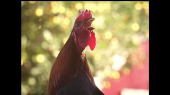 McDonald's McCafé TV Spot, 'Rooster' - Thumbnail 2
