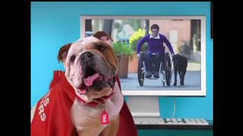 Mattress Discounters Good Deed Dogs TV Spot - Thumbnail 1