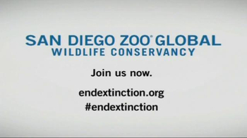 San Diego Zoo Global Wildlife Conservancy TV Spot, 'Back From Extinction' - Thumbnail 10