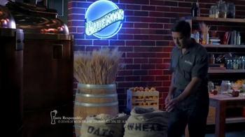 Blue Moon Summer Honey Wheat TV Spot, 'Brewing Up Summer' - Thumbnail 1