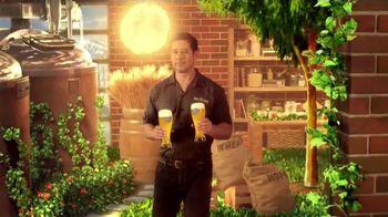 Blue Moon Summer Honey Wheat TV Spot, 'Brewing Up Summer'