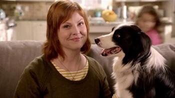 Milo's Kitchen Homestyle Dog Treats TV Spot  - Thumbnail 1