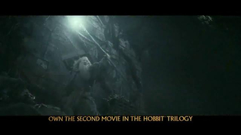 The Hobbit: The Desolation of Smaug Blu-ray and DVD TV Spot - Thumbnail 5