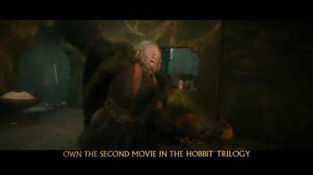 The Hobbit: The Desolation of Smaug Blu-ray and DVD TV Spot - Thumbnail 7
