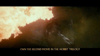 The Hobbit: The Desolation of Smaug Blu-ray and DVD TV Spot - Thumbnail 8