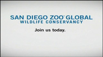 San Diego Zoo Global Wildlife Conservancy TV Spot, 'Be a Hero'