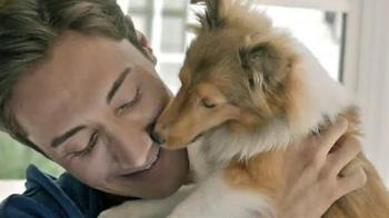 PetSmart Fetch 'n Save Sale TV Spot - Thumbnail 1
