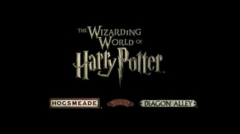 The Wizarding World of Harry Potter TV Spot, 'Diagon Alley' - Thumbnail 9