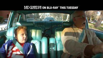 Bad Grandpa Home Entertainment TV Spot