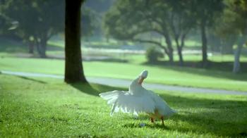 Aflac TV Spot, 'Bad Golfer' - Thumbnail 5