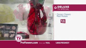 ProFlowers TV Spot, 'Valentine's Day 2014' - Thumbnail 4