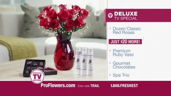 ProFlowers TV Spot, 'Valentine's Day 2014' - Thumbnail 5