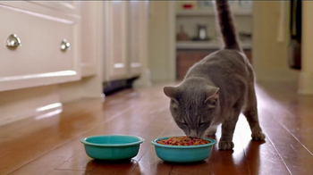 Friskies Seafood Sensations TV Spot, 'Shadows'