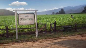 Canada Dry TV Spot, 'Jack's Ginger Farm' - Thumbnail 1