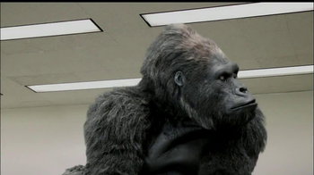 LaQuinta Inns and Suites TV Spot, 'Gorilla in the Room' - Thumbnail 10
