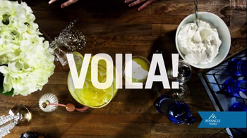 Pinnacle Vodka TV Spot, 'Lemon Cocktail' - Thumbnail 9