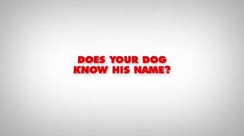 Mr. Peabody & Sherman - Alternate Trailer 1