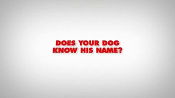 Mr. Peabody & Sherman - Alternate Trailer 4