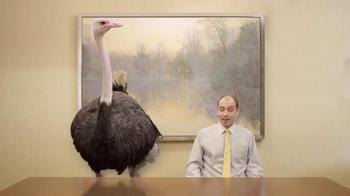 Doritos Crash the Super Bowl Finalist TV Spot, 'Ostrich' - Thumbnail 10