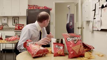 Doritos Crash the Super Bowl Finalist TV Spot, 'Ostrich' - Thumbnail 8