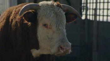 Chevrolet Silverado Super Bowl 2014 TV Spot, 'Romance'