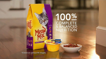 Meow Mix TV Spot, 'Stealthy Approach' - Thumbnail 9