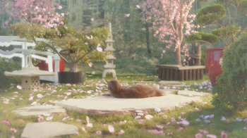 Sheba TV Spot, 'Cat Heaven'