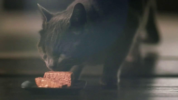Sheba TV Spot, 'Cat Heaven' - Thumbnail 8
