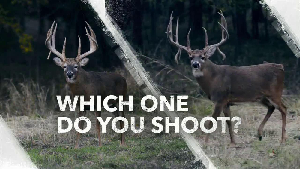 Hoyt Archery Spyder TV Commercial, 'Which One Do You Shoot?'
