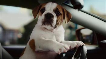 CarMax Super Bowl 2014 TV Spot, 'Slow Bark' Puppy Version - Thumbnail 9