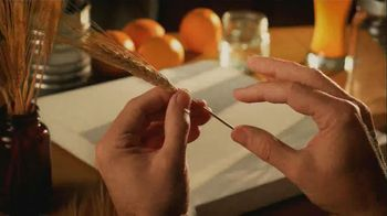 Blue Moon TV Spot, 'Crafted' Song by South of France