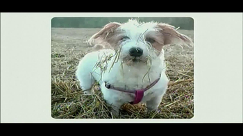 Best Friends Animal Society TV Spot, 'Can't Buy a Best Friend' - Thumbnail 10