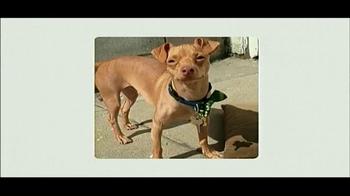 Best Friends Animal Society TV Spot, 'Can't Buy a Best Friend' - Thumbnail 2