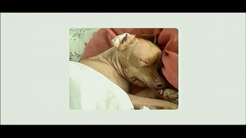 Best Friends Animal Society TV Spot, 'Can't Buy a Best Friend' - Thumbnail 7