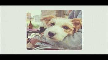 Best Friends Animal Society TV Spot, 'Can't Buy a Best Friend' - Thumbnail 9