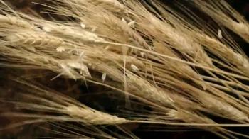 Triscuit Brown Rice TV Spot, 'Ingredients' - Thumbnail 10