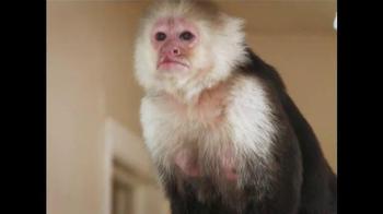 HomeVestors TV Spot, 'Monkey Buds' - Thumbnail 3