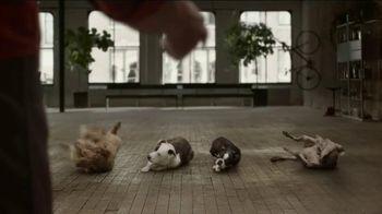 JPMorgan Chase TV Spot, 'Chase Mastery: Dog Trainer' Feat. Joel Silverman