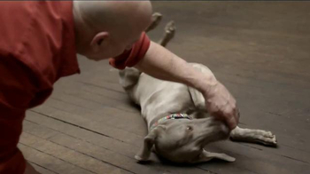 JPMorgan Chase TV Spot, 'Chase Mastery: Dog Trainer' Feat. Joel Silverman - Thumbnail 4
