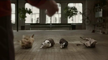 JPMorgan Chase TV Spot, 'Chase Mastery: Dog Trainer' Feat. Joel Silverman - Thumbnail 6