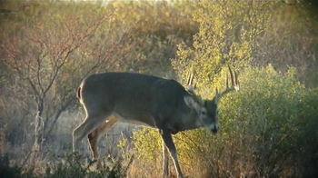 New Archery TV Spot, 'Chasing Bucks' Featuring Luke Bryan and Jason Aldean - Thumbnail 5