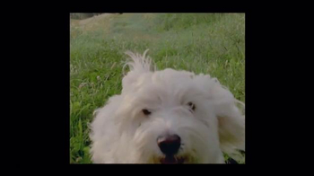 Freshpet TV Spot, 'A Fresh Take on Pet Food' - Thumbnail 1